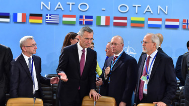 NATO stands with Ukraine, steps up practical support