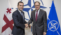 Leader of the Our Georgia - Free Democrats party visits NATO