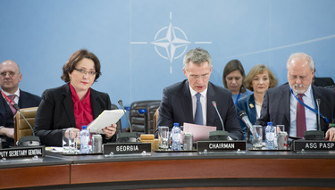 Meeting of the NATO-Georgia Commission