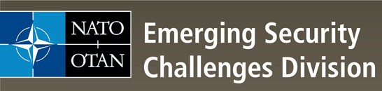 emerging security challenges for touris Nato review topical page about: emerging security challenges.