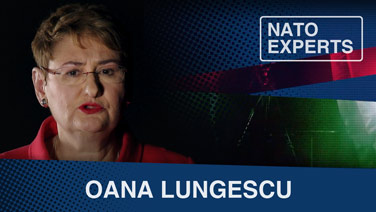 Oana Lungescu - Why is transparency so important to NATO?