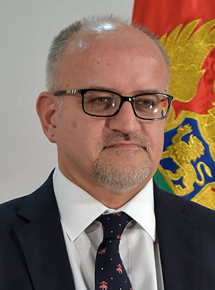 Srdjan Darmanović, Minister of Foreign Affairs of Montenegro
